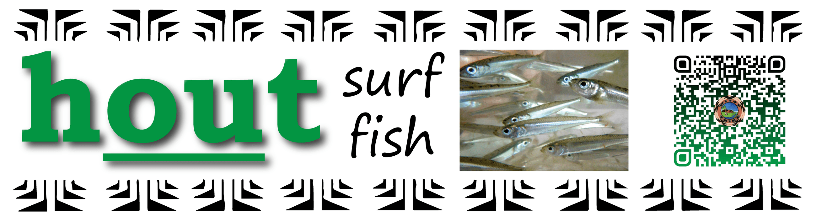 Pronunciation vocabulary primer_OUou_hout_surf_fish