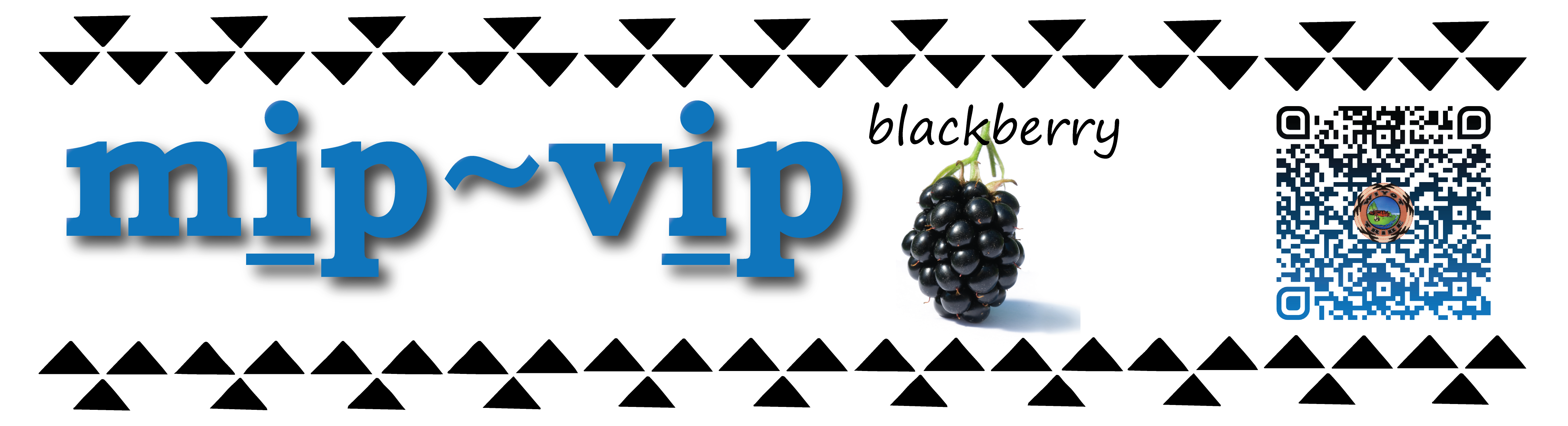 Pronunciation vocabulary primer_Ii_mip_vip_blackberry